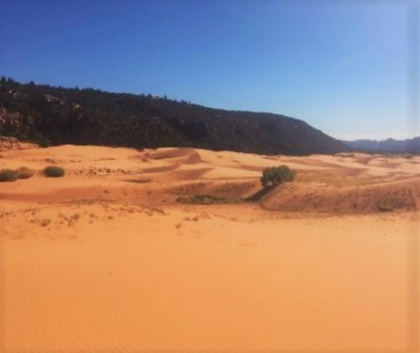 sand dune (2)